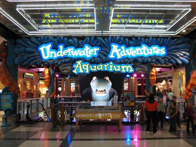 Review Of Underwater Adventures Aquarium Sea Life Minnesota